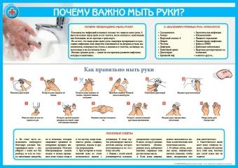 Санбюллетень Почему важно мыть руки