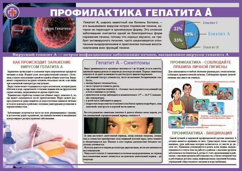 санбюллетень в картинках гепатиты линия