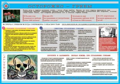 Санбюллетень Осторожно грибы